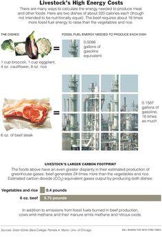livestock high, high energi, energi cost, elementari school, environment issu, food justic