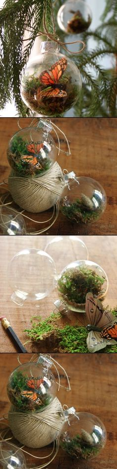 TERRARIUM ORNAMENTS