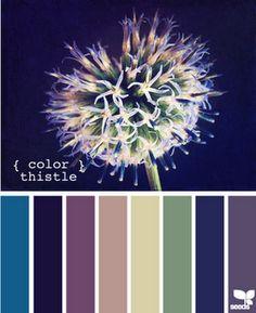 Color Thistle - great paint color choices