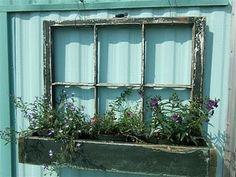 """""""Window"""" box"""
