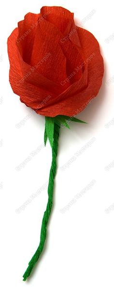 easy crepe paper rose