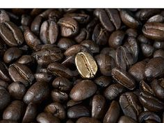 Gold bean. (Photo on fStop by Caspar Benson) #photography #coffee