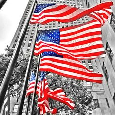 Flag Day at 30 Rock