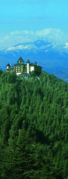Seclusion in the foothills of the Himalayas. #India