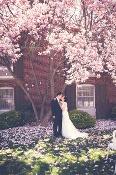 Spring magnolia wedding Feature on Vineyard Bride! - Gemini Photography Ontario - #blossoms wedding niagara-on-the-lake #gardenwedding #spring Pillar and Post