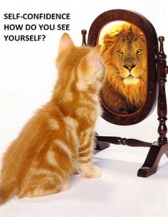 Self-confidence, how do you see yourself?