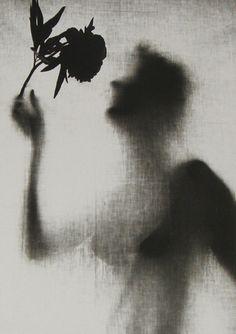 Eva Fuka, 1957 silhouett, art life, 1957 eva, eva fuka, inspir, beauti, flowers, black, photographi