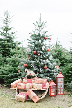 Pretty Christmas Tre