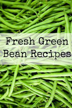 Using the Garden Veggies | Fresh Green Bean Recipe Ideas :: Garden Recipes