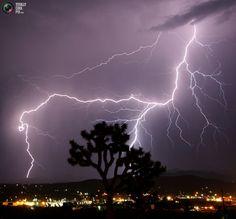 Lightning strikes across the skies of Twentynine Palms in California during monsoon August 8, 2005