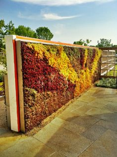 Orange Living Walls   Green Living Technologies--gorgeous color