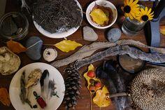 fall. nature table.   Flickr - Photo Sharing!