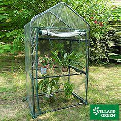 smaller big lots greenhouse $15