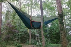 i want to make something like this, but would any but the trees in girdwood support it?  maybe spread the weight between 3 or 4....
