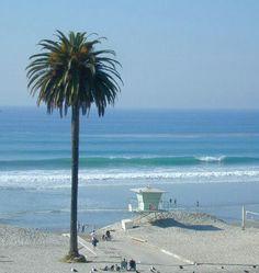 Moonlight Beach - Calif