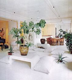 plant, books, artists, white living, white spaces