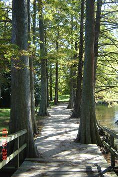 Pathway at Swan Lake Gardens, Sumter, SC