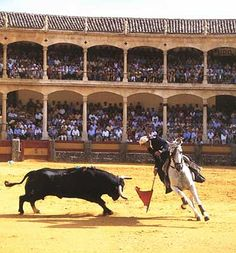 Oldest Bull Fighting Ring - Ronda, Spain