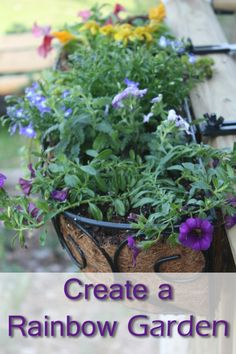 Rainbow planter on the porch rail? Gorgeous way to add quick color to your garden.