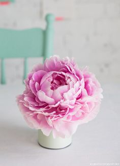 http://flowerona.com/2014/03/interview-with-holly-becker-co-author-of-the-inspirational-new-book-decorate-with-flowers/