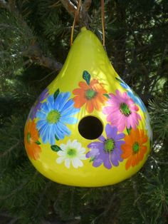 Hand painted gourds in Colorado. https://www.facebook.com/pages/Howard-Creek-Creations/242174309138608 hand paint, spring flower, painted gourds, painted gourd birdhouses, paint gourd, gourdgeous idea