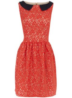 Dorothy Perkins  Coral lace collar dress