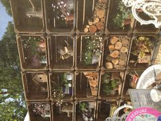 Wildlife wall and upycled tins - Bee garden - Hampton court flower show 2013