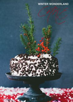 Winter Wonderland Cake With Evergreen Sprigs