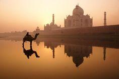 Taj Mahal At Sunrise - Photography by Michele Burgess
