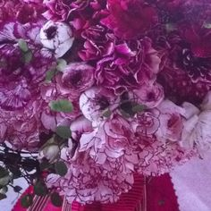 Don't count Carnations out! Another inexpensive flower. Accent with other flowers, such as Peonies and add some beautiful ribbon. LOVE it! Btw, Martha Stewart Wedding Magazine has the best ideas. I'm a fan!