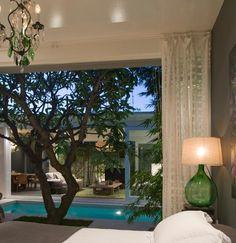 House built around frangipani tree, love it :)