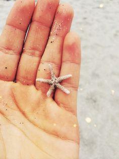 treasur, dream, beach find