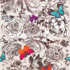 Butterfly Garden wallpaper from Osborne and Little