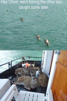 Deer fishing.