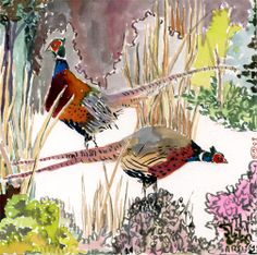 pheasants watercolor