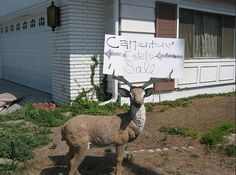 Great way to put your lawn ornaments to some good use. Hang your Estate Sale sign in the Antlers - well done!