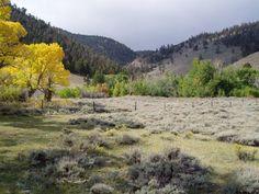 near Laramie Wy