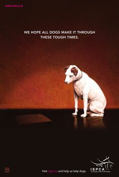 Irish Society for the Prevention of Cruelty to Animals: Nipper | #ads #marketing #creative #werbung #print #advertising #campaign < repinned by www.BlickeDeeler.de | Follow us on www.facebook.com/BlickeDeeler   #btl #advertising www.rx4gigs.com