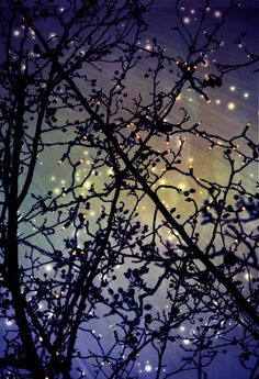 #PURPLE #NIGHT #SKY, #STARS #NATURE