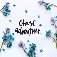 chase adventure inspiration quotes