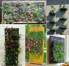 Pequenos jardins e hortas verticais.  Saiba como fazer mais coisas em http://www.comofazer.org