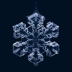 amazing macro shots of snowflakes by Matthias Lenke