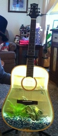 Guitar fish tank.