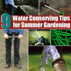 9 Water Conserving Tips for Summer Gardening
