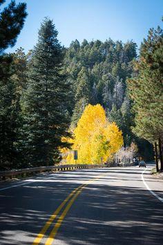 #Mt #Lemmon #Arizona