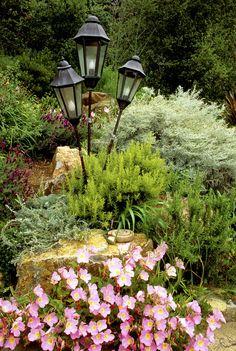 Garden Feature Photos