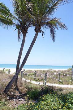 Captiva Island, FL loooveee captiva!!!
