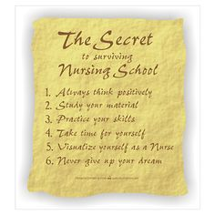 Surviving Nursing School