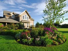 Jaw Dropping Flower Beds Arrangements And Landscape