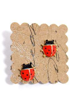 Ladybugs!!!!